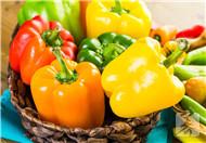 柿子椒的功效与作用