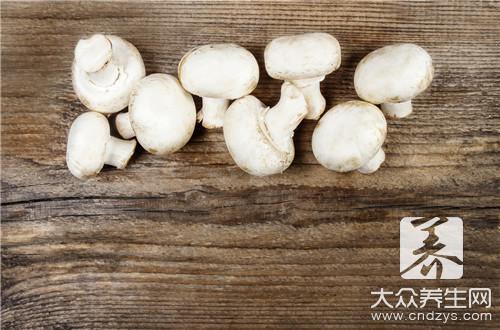 白玉菇和什么相克