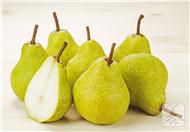 无花果和梨能一起吃吗