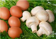 血脂稠可以吃鸡蛋吗