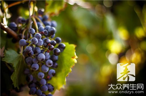 制作葡萄酒最正宗的方法