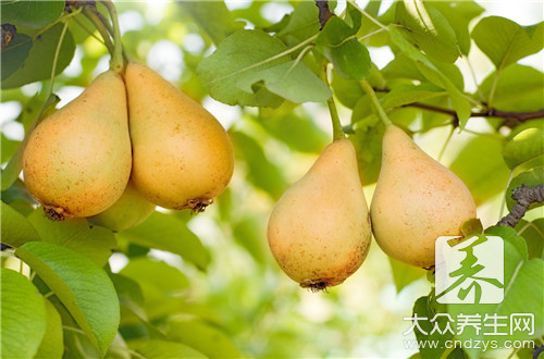 What does the sort of pear have