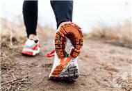 跑步可以减小腿肌肉吗