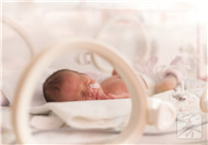 早产儿脑部发育不良