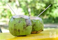 椰子粉会发胖吗