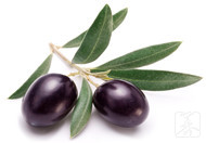 泡橄榄的做法