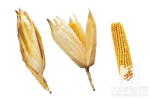 玉米须子煮水喝的功效