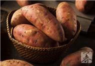 孕晚期可以吃红薯吗