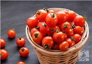 番茄和橙子能一起吃吗