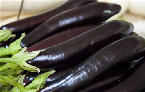 Be pregnant can eat aubergine
