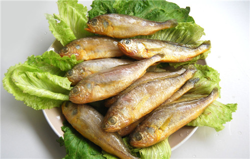 Be pregnant can eat yellow croaker