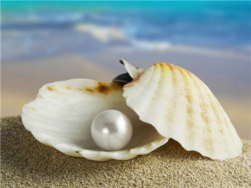 Be pregnant can take pearl powder